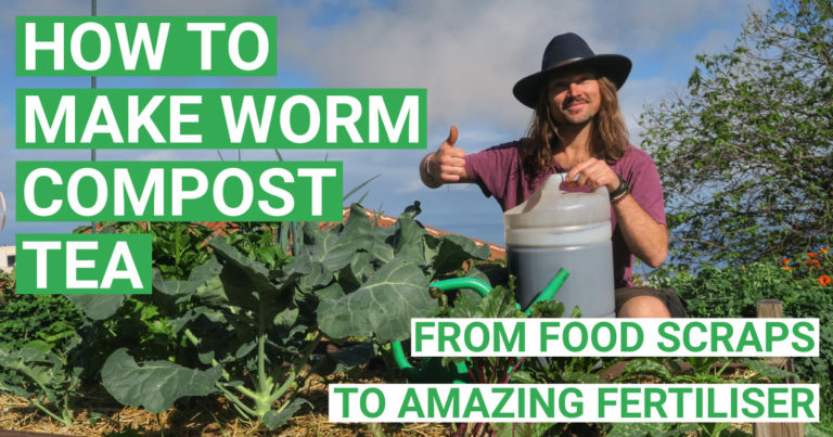 Video: How To Make Compost Tea (DIY Aerated Worm Compost Tea Brewer)