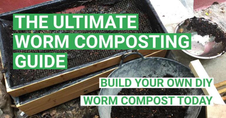 The Ultimate Worm Composting Guide – How to Build a Worm Compost (DIY)