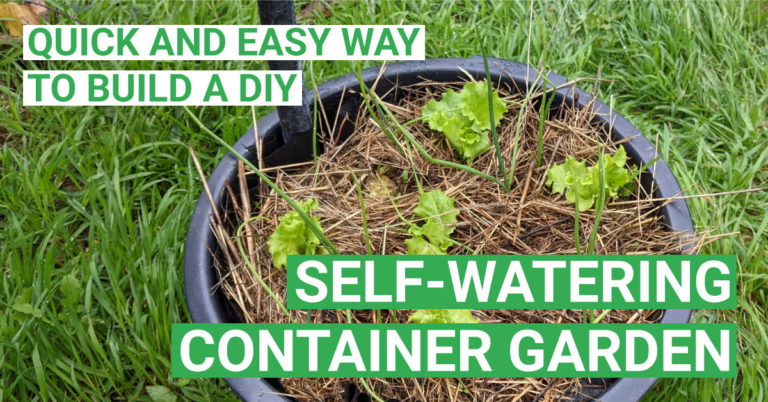 Quick and easy way to build a DIY Self-Watering Wicking Bed